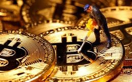 """Goldman Sachs: Vàng và Bitcoin - không ai """"ăn thịt"""" được ai"""