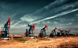 Giá dầu đang giảm nhưng vẫn có tháng tăng thứ 4 liên tiếp
