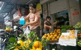 Hàng bưởi Diễn da vàng óng có từng búi hoa tươi trở thành món hàng siêu độc trên chợ nhà giàu Hà Nội, tận 100k/quả, bà chủ thu cả chục triệu mỗi ngày!