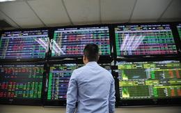 Phương pháp đầu tư thích hợp khi thị trường rung lắc, tích lũy dưới 1.200 điểm