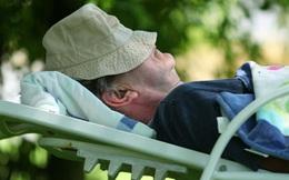 Một giấc ngủ trưa ngắn có thể giúp những người lớn từ 60 tuổi trở lên có tinh thần nhanh nhẹn hơn so với những người không ngủ trưa, đây là lý do tại sao