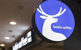 Sự sụp đổ chóng vánh của Luckin Coffee: Cổ phiếu rơi từ 50 USD xuống 1 USD sau 3 tháng, nộp đơn phá sản sau bê bối khai khống doanh thu