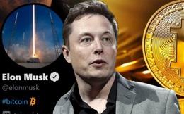 Tesla bất ngờ thông báo mua 1,5 tỷ USD Bitcoin và sẽ chấp nhận sử dụng đồng tiền này để thanh toán