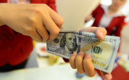 Tỷ giá cuối ngày đảo chiều tăng mạnh, USD tự do lên 23.620 đồng