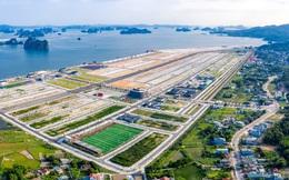 'Mạnh' như Phương Đông - chủ đầu tư dự án lấn biển 16.000m2 bị phạt ở Vân Đồn