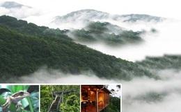 Siêu dự án giải trí, nghỉ dưỡng lớn bậc nhất Việt Nam trên quy mô 24.000ha tại Thanh Hóa sẽ về tay ông lớn nào?