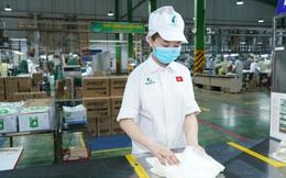 An Phát Holdings chính thức được Hoa Kỳ bảo hộ sản phẩm xanh