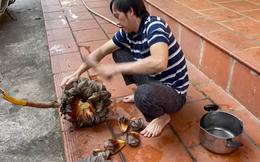 """Hoài Linh: """"Tôi bây giờ chỉ ăn uống đạm bạc, chẳng có tiền ăn cao lương mỹ vị"""""""