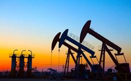 Kẻ thắng người thua khi giá dầu và hàng hoá tăng