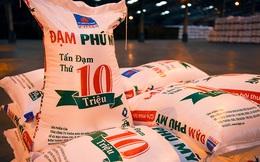 PSI: Sản lượng và giá phân bón tăng mạnh, Đạm Phú Mỹ (DPM) có thể lãi gần 800 tỷ đồng trong năm 2021