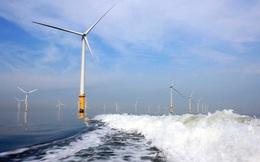 Điện gió ngoài khơi trong dự thảo Quy hoạch điện VIII chỉ chiếm 1,45-2% tổng công suất điện, các tổ chức quốc tế nói gì?