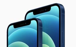 Apple đã đánh giá quá cao iPhone 12 mini?