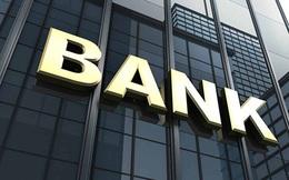 Vì sao phát sinh nhiều vụ việc trong lĩnh vực ngân hàng?