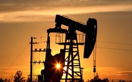 Nhà đầu tư lại mơ giá dầu sắp lên 100 USD/thùng