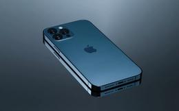 iPhone 13 có thể sẽ không bao giờ xuất hiện