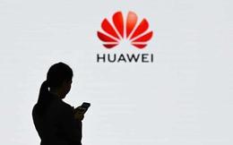 """Mệt mỏi với lệnh cấm vận từ Mỹ, Huawei tính chuyện """"về quê nuôi cá và trồng thêm rau"""""""