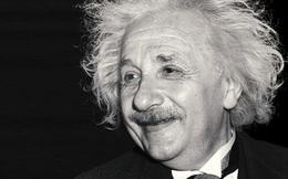 Giáo sư Harvard cho rằng có 8 loại hình trí thông minh: Đọc để biết bạn nằm ở mục nào, có chuyên môn gì, xây dựng sự nghiệp ra sao