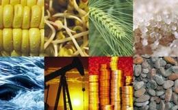 Thị trường ngày 16/3: Giá dầu giảm, quặng sắt tiếp tục lao dốc