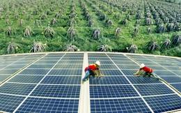 EVN: Tỷ trọng năng lượng tái tạo tăng lên 83% năm 2045 sẽ gây áp lực rất lớn đến đầu tư