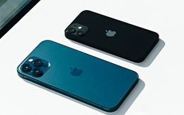 Mức độ trung thành của người dùng iPhone đạt mức cao kỷ lục