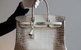 """Chiếc túi xách tay có giá đắt nhất thế giới """"xuất xưởng"""": Chất liệu khỏi bàn, là phiên bản giới hạn, có tiền chưa chắc mua được!"""
