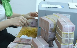 Nhẹ gánh nợ xấu, ngân hàng thêm kỳ vọng cho lợi nhuận 2021