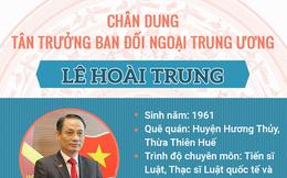 Chân dung ông Lê Hoài Trung tân Trưởng ban đối ngoại Trung Ương