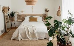 """3 loại cây là """"khắc tinh"""" của phòng ngủ, chớ mua kẻo rước bệnh tật và vận xui vào người"""