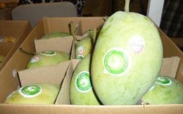 Xuất khẩu rau quả khởi sắc nhờ thị trường Trung Quốc tăng mua