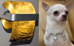 Thú vui của giới nhà giàu: Điện thoại đính kim cương, dát vàng là chuyện xưa rồi, đây mới là đỉnh cao của sự xa xỉ