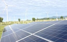 Vì sao giá điện từ nguồn năng lượng tái tạo giảm mạnh?