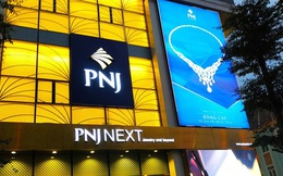 PNJ tăng cổ tức năm 2020 lên 20%, đặt kế hoạch lợi nhuận 1.230 tỷ đồng trong năm 2021