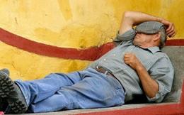 Thói quen ngủ trưa của người Việt được tiến sĩ Úc khen hết lời, kêu gọi làm theo
