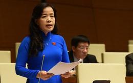 Luật Đất đai khiến nhiều đại biểu băn khoăn trong kỳ họp cuối cùng của Quốc hội khóa XIV