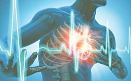 Nhịp tim khỏe, tuổi thọ cao: Đây là bí quyết giúp bạn củng cố sự ổn định của nhịp tim
