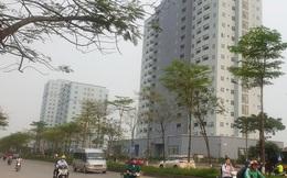 Khu chung cư view cực đẹp nhưng lại trở thành nơi hoang phế vì nhiều năm không có người ở