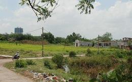 Củ Chi kiến nghị chuyển đổi 17.000 ha đất nông nghiệp sang chức năng khác