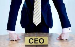 Nhiều ngân hàng nước ngoài tại Việt Nam đổi CEO