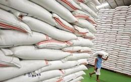 Sẽ chấm điểm uy tín nhà mua gạo dự trữ quốc gia để tăng tính cạnh tranh