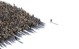 [Quy tắc đầu tư vàng] Hiệu ứng bầy đàn Henri Fabre và bài học để đời trong đầu tư chứng khoán