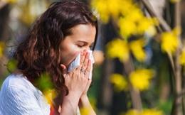 Mùa dị ứng bắt đầu khi nào? Chuyên gia đưa ra lời khuyên về thời điểm bạn nên dùng thuốc để ngăn ngừa tình trạng này