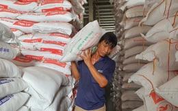 Gạo Việt Nam lập đỉnh giá mới