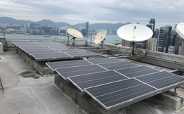 WEF: Chỉ trong 1 năm, công suất phát điện mặt trời tại Việt Nam tăng tương đương 6 nhà máy nhiệt điện than