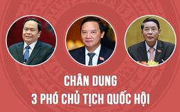 Chân dung 3 Phó Chủ tịch mới của Quốc hội