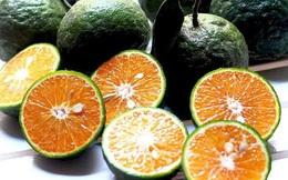 """Sự thật về lời đồn """"ăn cam sau khi uống thuốc gây ngộ độc"""""""