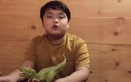 Thắng 40 triệu đồng ở Ai là triệu phú nhưng Xuân Bắc vẫn bị Bi béo chất vấn: Câu trả lời của anh khiến khán giả ngỡ ngàng vì cách dạy con!
