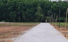 Rao bán đất trồng cây thành khu phân lô nghỉ dưỡng trong 'cơn sốt'