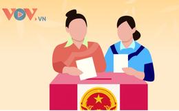 Các hành vi bị cấm trong vận động bầu cử Quốc hội, HĐND