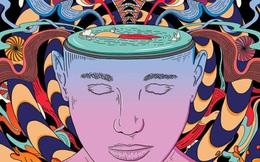 """10 hiệu ứng tâm lý giúp """"đánh lừa não bộ"""" để xoay chuyển cuộc sống, biến nguy thành an: Nắm vững 1 điều cũng đủ yên tâm hưởng lợi cả đời"""