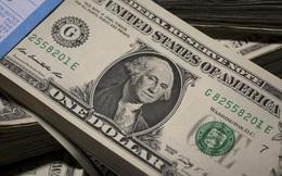USD giảm mạnh tuần thứ 2 liên tiếp do chính sách lãi suất thấp kéo dài